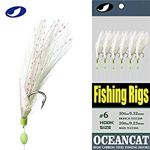 OCEAN CAT 10/20 Packs 3 Feather & Fish Skin 6 Hooks Saltwater Fishing Rigs with String Hook Lure Bait Tackle Jig (1#, 10 Packs)