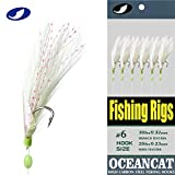 OCEAN CAT 10 Packs Fishing Rigs 3 Feather & Fish Skin 6 Hooks Saltwater String Hook Fishing Lure Bait Rigs Tackle Jig (6#, 10 Packs)