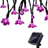 Tuokay Solar Lichterkette Außen 7m 50 LED 8 Modi Wasserdicht LED Außenlichterkette mit Blumen, Dekorative Beleuchtung für Garten Balkon Pavillon Terrasse Rasen Hof Zaun Hochzeit Deko (Rosa)