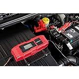 Absaar 0635671 AB-4 Chargeur de Batterie Automatique 6/12V, Rouge