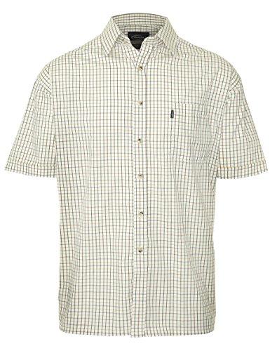 Champion Men's Short Sleeve Shirts Various Designs M L XL XXL 3XL 4XL 5XL (Medium, 3041 Green)