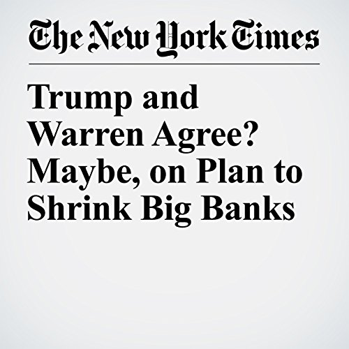 Trump and Warren Agree? Maybe, on Plan to Shrink Big Banks copertina