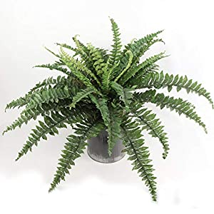 """Larksilk Boston Fern Artificial Plants Fake Silk for Outdoor or Indoor House Plant, Hanging Basket or Planter, 48"""" Inch Diameter Set of (6) 48 Fronds Each"""