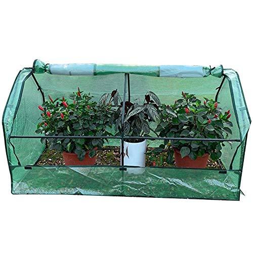 QIANCHENG gewächshaus Treibhaus Foliengewächshaus Tomatenhaus Garten PE Abdeckung Fenster Vent Polycarbonat Pflanze Wachsend Gemüse,180x91x95cm