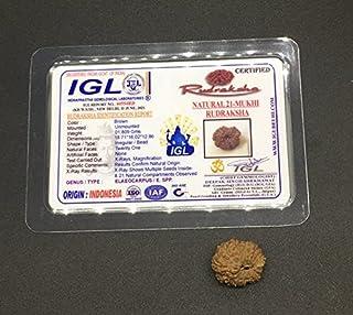 21 Mukhi Rudraksha from Java (Indonesia) Natural Twenty One Face Lord Kuber Rudraksha 18.71mm IGL Certified Exact Bead