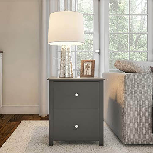 Lavish Home End 2 Drawers-Sofa Side Table, Gray & Silver