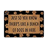 Ruiyida Just So You Know, There's Like A Bunch of Dogs in Here Entrance Floor Mat Funny Doormat Door Mat Decorative Indoor Outdoor Doormat Non-Woven 23.6 by 15.7 Inch Machine Washable Fabric Top