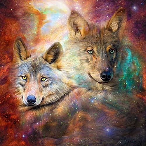 FHGFB 5D DIY Diamantmalerei Praxis Strass Kristall Kopfsteinpflaster Kreuzstich Wolf Home Stickerei -40x40cm Kein Rahmen