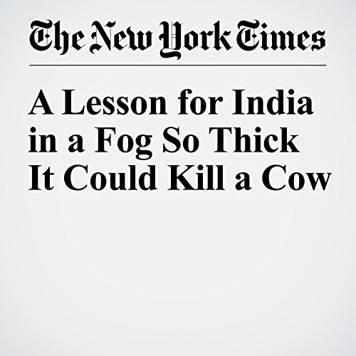 A Lesson for India in a Fog So Thick It Could Kill a Cow cover art