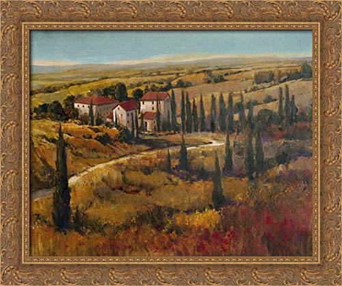 Otoole, Tim 35x28 Gold Ornate Framed Canvas Art Print Titled: Tuscany II