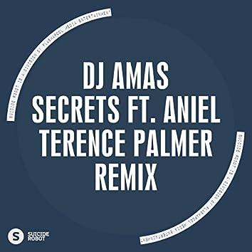 Secrets feat Aniel (Terence Palmer Remix)