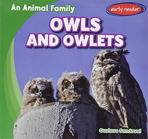 Owls and Owlets (An Animal Family)