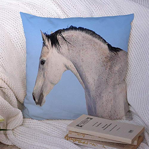Fundas de almohada decorativas para sofá cama, sofá, azul, caballo árabe enojado, animales, vida silvestre, acción, naturaleza, plata, bestia árabe, campo de belleza, funda de cojín suave de raza negr