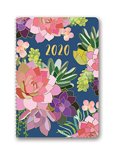 Orange Circle Studio 2020 On-Time Weekly Planner, Succulent Paradise