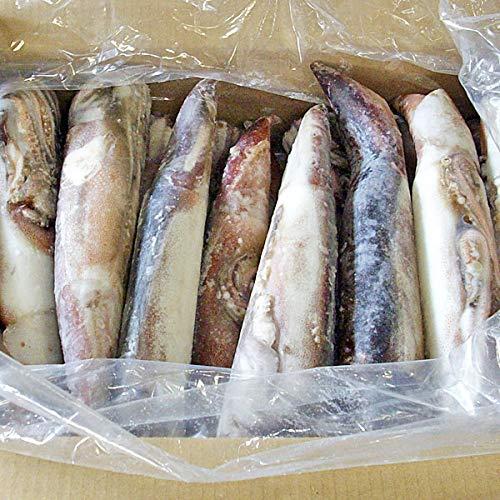 真いか (IQF スルメイカ) 7.5kg(23〜25尾) 業務用 北海道・青森産【出荷元:北海道四季工房】