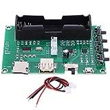 Placa amplificadora digital TQNSSM XH-A150 Placa amplificadora...