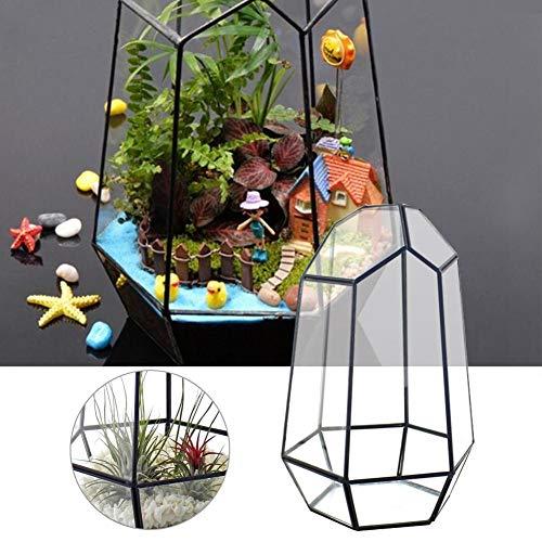 Sue Supply Blumentopf, geometrisch, geschlossen, Terrarium, aus Glas, unregelmäßig, mit Tür, Blumenkasten, Sukkulenten, Tisch, Bonsai, Reptilien-Behälter, Büro, Display Box, Candle Holder