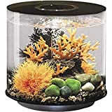 biOrb Tube 15 Aquarium with MCR - 4 Gallon, Black