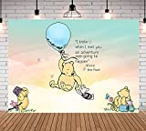 Rainbow Winnie The Pooh Theme Photography Backdrop Baby Shower Kids Birthday Party Photo Bckdrops Colorful Clouds Newborn Studio Booth Banner Cake Table Decoration 7X5FT