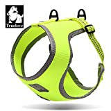 TrueLove TLH2511 Dog Harness Simply Comfortable Mesh Reflective Pet Vest Now Available (M, Neon Yellow)