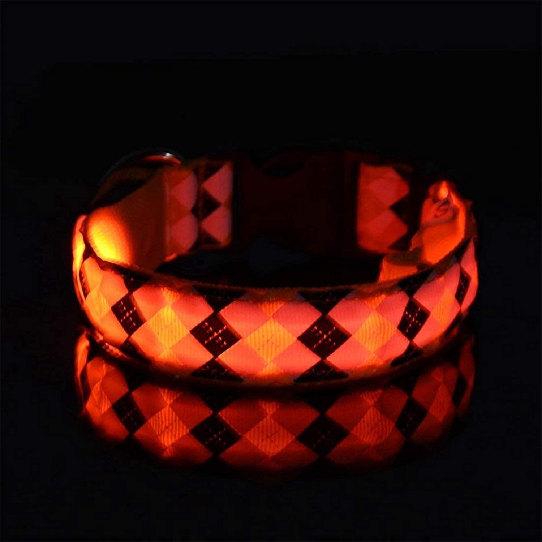 FERZA petsuppliesmisc Pet Led Light Dog Collar Light Collar Dog Belt Pet Chain (color   Yellow, Size   XL [charged])
