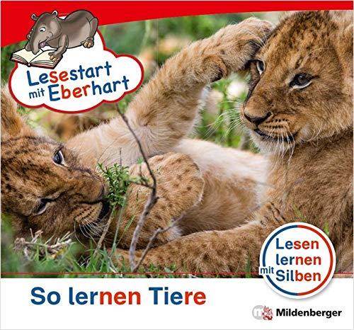 Lesestart mit Eberhart: So lernen Tiere: Sonderheft, Lesestufe 3 (Lesestart mit Eberhart: Lesen lernen mit Silben - Themenhefte für Erstleser - 5 Lesestufen - je 10 Hefte)