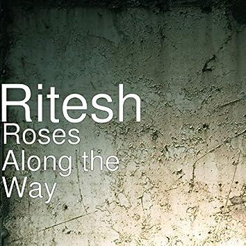 Roses Along the Way