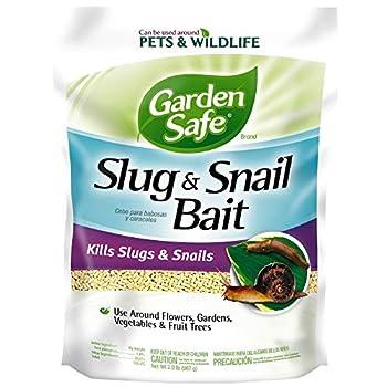 Best snail bait Reviews
