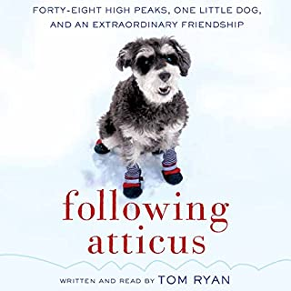 Following Atticus cover art