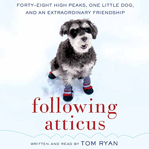 Following Atticus audiobook cover art