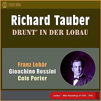 Drunt' in Der Lobau (London - Wien Recordings of 1933 - 1936)