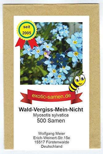 Wald-Vergiss-Mein-Nicht - Myosotis sylvatica - Bienenweide - 500 Samen