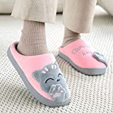 WYJBD Zapatillas De Mujer con Bordado En 3D, Zapatos De Felpa Cálidos De Invierno para Mujer, Zapatillas De Casa para Interior/Exterior, Casa De Piel para Parejas, Amantes, Forma De Memoria
