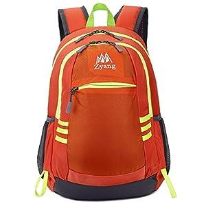 キッズ リュック アウトドア 子供 バックパック ハイキング 遠足リュック 軽量 登山リュック デイバッグ メンズ レディース 親子バッグ 撥水加工 ナイロン ジュニア 22L オレンジ