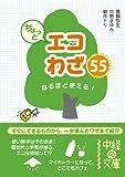 ちょっとエコわざ55 (中経出版)