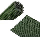 HYDDNice - Juego de 25 estacas de Metal para Plantas de jardín con Tubo Recubierto de plástico para Plantas de Pepino de Tomate, Plantas trepadoras