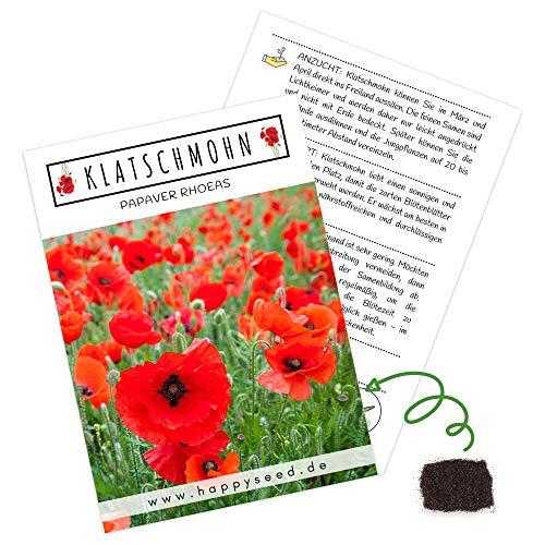 Klatschmohn Samen (Papaver rhoeas) - Wunderschön blühende Mohnblumen mit langer Blütezeit für eine bunte Blumenwiese (Rot)