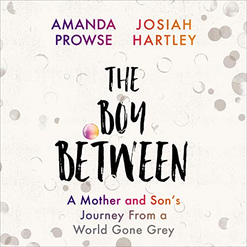 Image for The Boy Between: A Mother and Son's Journey from a World Gone Grey