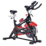 NATIONAL BODYLINE Spin Bike| Spine Fitness Equipment| Exercise Cycle For Indoor Home Gym| 18Kg...
