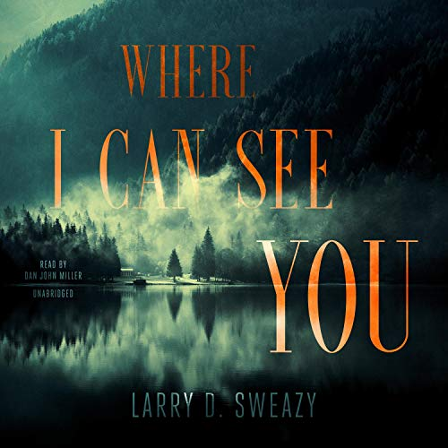Where I Can See You cover art
