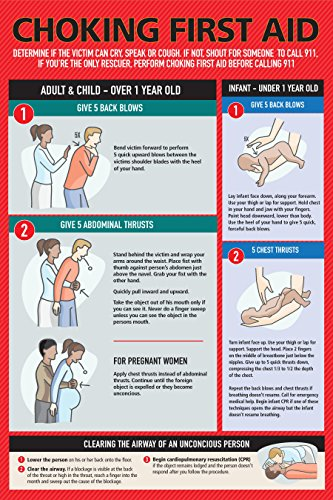 Safety Choking Victim Poster Measures 12 x 18, Choking First Aid Poster for Infants, Kids, Pregnants, and Adults, First Aid Guide Quick Reference Guide, Laminated