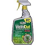 Wilson Weed & Moss Control