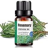 Aceites Esenciales de Aromaterapia - Natural 100% de Aceite Esencial Natural Conjunto de Difusores y Humidificadores con Caja de Regalo Exquisita (UVa Natural, 10 ML) (Romero)
