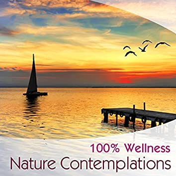100% Wellness - Nature contemplations