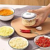 Garlic Mincer, Garlic Chopper Mini Food Processor Small Food Chopper Multifunction Garlic Press for Seasoning & Spice,...