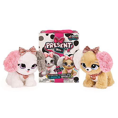 Bizak- Paw Mi Mascota, Regalo Fancy Present Juguete (61926530)