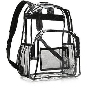 51R+JX8G1PL. SS300  - AmazonBasics - Mochila escolar - Transparente