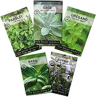 Sow Right Seeds - Italian Herb Garden Seed Collection - Individual Packets of Basil, Oregano, Parsley, Sage, and Thyme to Plant; Non GMO Heirloom with Instructions for Planting
