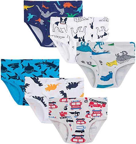 KEREDA Jungen Slips Baumwolle Unterwäsche Tier Motive Unterhosen für Kinder 2-8 Jahre 6er Pack Größe 98-140(Dino 1,4-5 Jahre)
