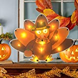 ALLADINBOX 13 LEDs Lighted Turkey Orange Light with Pilgrim Hat Thanksgiving Window Wall Door Table Centerpiece Silhouette Hanging Decoration (2AA Battery not Included)
